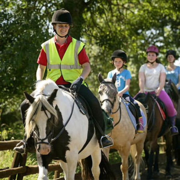 Horse Riding Introduction - 21st gift