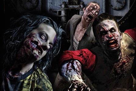 Zombie Apocalypse Experience - 30th gift