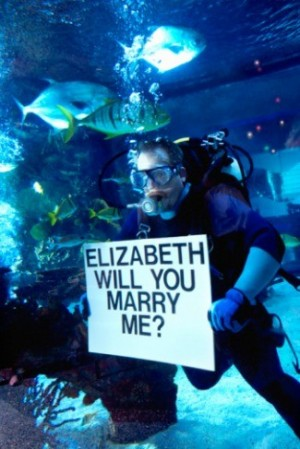 Propose while scuba diving