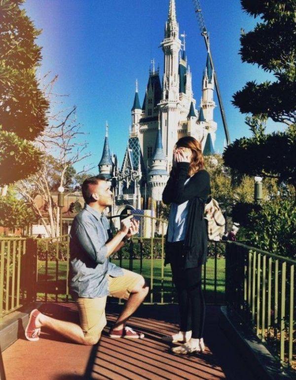 Disney Proposal 1