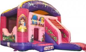 Princess Fantasy Castle And Slide (14x21)