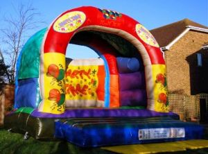 Child and Adult Bouncy Castle